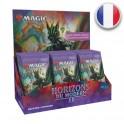 Magic Boite de 30 boosters d'Extension Horizons du Modern 2 FR MTG The gathering