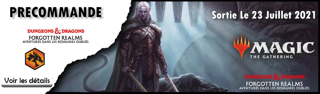 Precommande D&D Aventures dans les Royaumes Oubliés